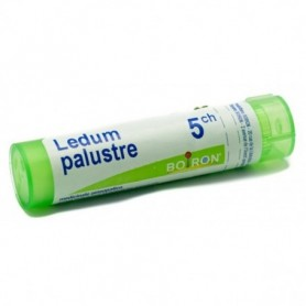 Ledum Palustre 5ch Granuli Boiron
