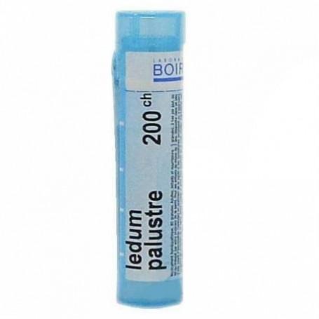 Ledum Palustre 200ch Granuli Boiron